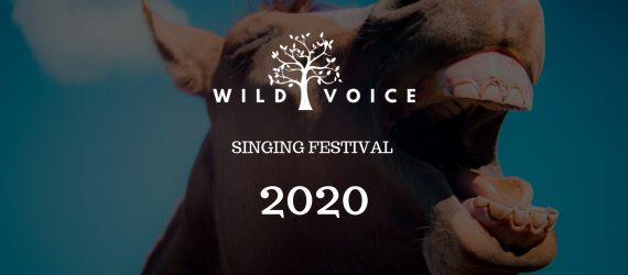 TicketEase - Sell Tickets Online - PRE-SALE TICKET 'SINGING FESTIVAL' 2020